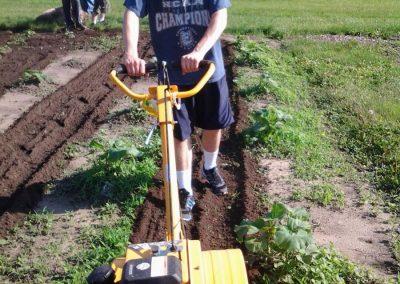 t_buildling a garden 2
